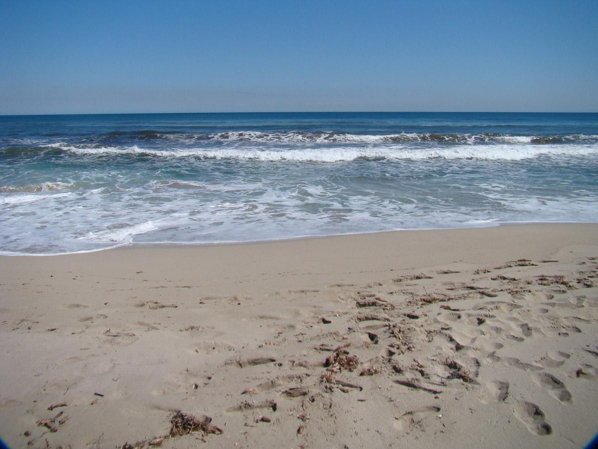 Фото на пляже в испании, На испанском пляже это делать можно (фото) 16 фотография