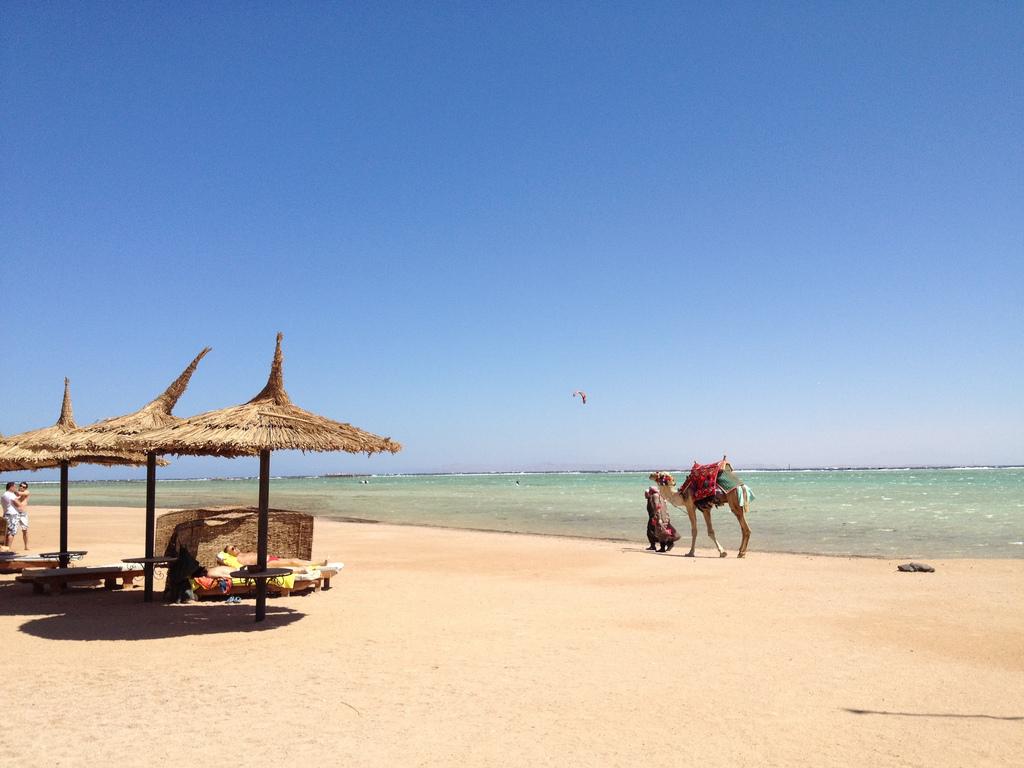 уже многого египет фото пляжей туристов назвали цвету воды