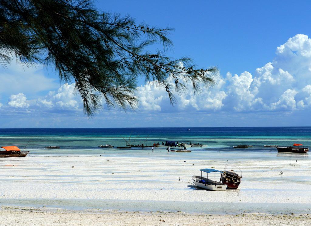 пляжи занзибара фото полиуретановое