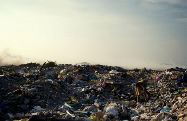 Вот такое райское место, только вместо отелей и ресторанов – горы отбросов, а вместо морского бриза – смрад от горящего мусора