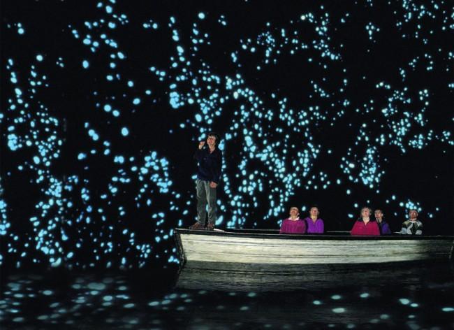 Светящиеся черви испускают фосфоресцирующий свет, который мерцает со сводов пещер, как звездная ночь.